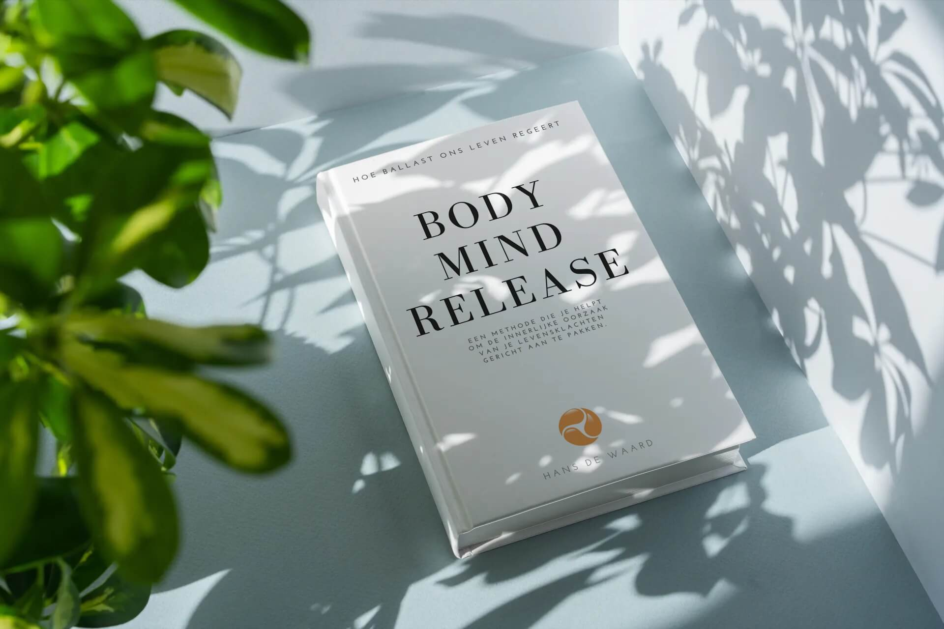 Boek Body Mind Release, over Body Mind Release